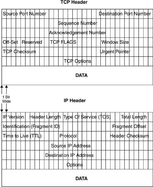 TCP/IP Packet Headers